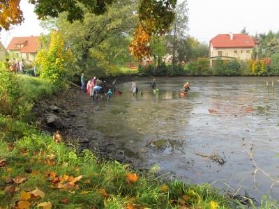 Výlovy rybníků v Malé Losenici