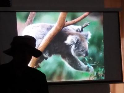 Přednáška o Austrálii s cestovatelem Janem Vařekou