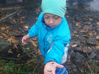 Výlov dolního rybníku SDH Malá Losenice