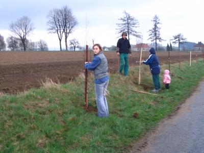sázení stromků 2008